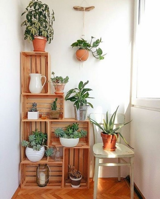 Top Interior Design Secrets you never knew top interior design secrets you never knew - INDOOR PLANTS and HOUSE PLANTS - Top Interior Design Secrets you never knew | JD Institute | Bangalore