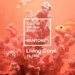 pantone - Picture1 150x150 - CAPTURING THE BLUES – PANTONE ANNOUNCED THE COLOUR OF 2020 pantone - Picture1 150x150 - CAPTURING THE BLUES – PANTONE ANNOUNCED THE COLOUR OF 2020