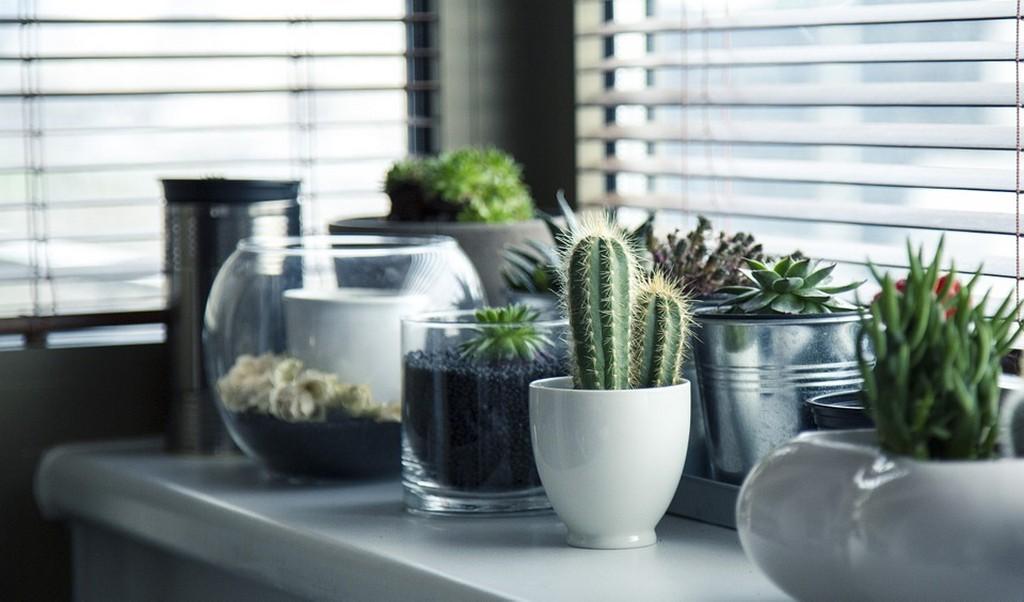 Interior decor trends for 2019 interior decor trends for 2019 - Interior decor trends 6 - Interior decor trends for 2019