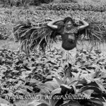 world food day - World Photography Day 2019 43 150x150 - FOOD MUSINGS AS JD INSTITUTE, COCHIN CELEBRATES WORLD FOOD DAY world food day - World Photography Day 2019 43 150x150 - FOOD MUSINGS AS JD INSTITUTE, COCHIN CELEBRATES WORLD FOOD DAY