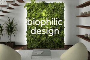 Biophilic Design - A Nature Oriented Interior Design bsc. in interior design and decoration - Biophilic Design A Nature Oriented Interior Design 300x200 - BSc. in Interior Design and Decoration – Bengaluru City University – 3 Years
