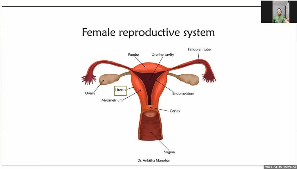 Women's Health - The Talk You Never Got in CONV. with Dr. Ankitha Manohar women's health - Female Reproductive System e1618908156763 - Women's Health – The Talk You Never Got in CONV. with Dr. Ankitha Manohar