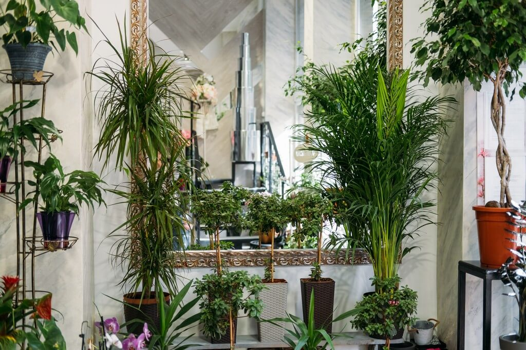 Go Organic in Your Interior Designing interior design - Go Organic in Your Interior Designing - INTERIOR DESIGN TRENDS TO LOOK OUT FOR IN 2021