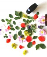 The Beauty Industry: 5 ways they are becoming eco-friendly