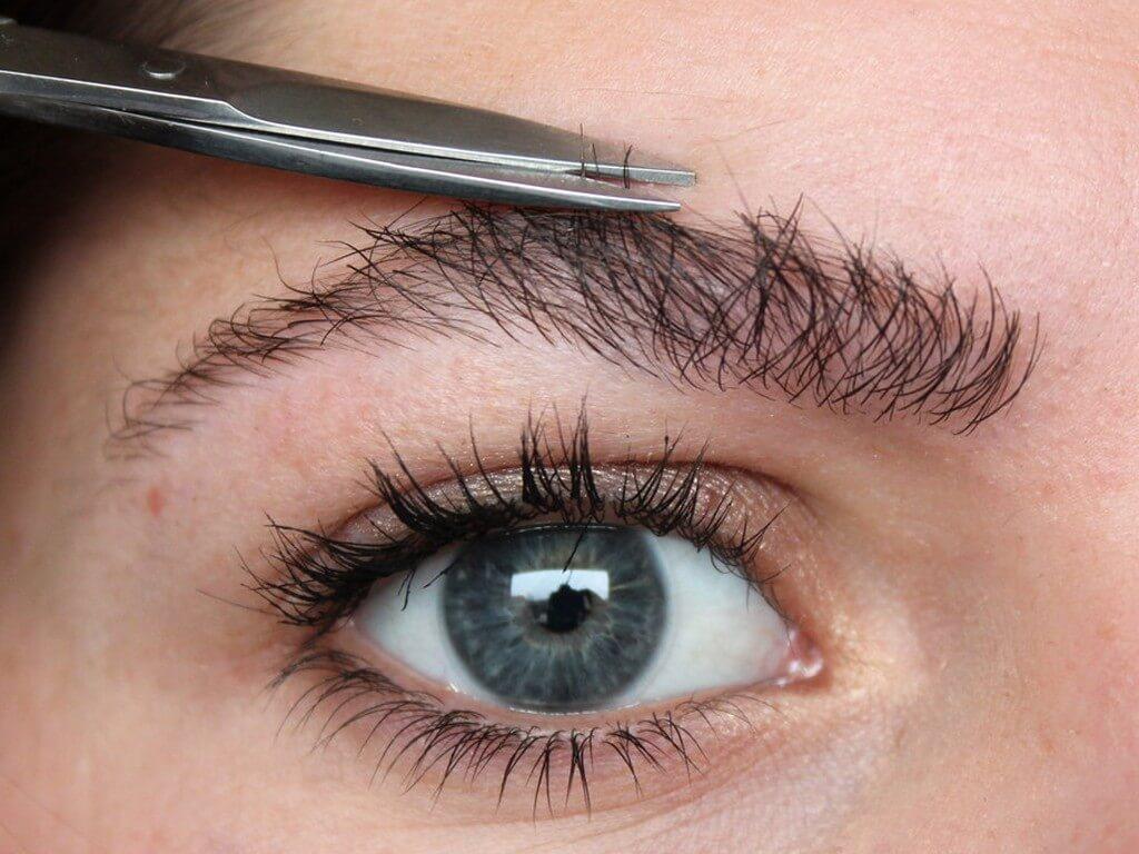 GROOMING EYEBROWS: WAYS TO GROOM EYEBROWS grooming eyebrows - Trimming  - GROOMING EYEBROWS: WAYS TO GROOM EYEBROWS