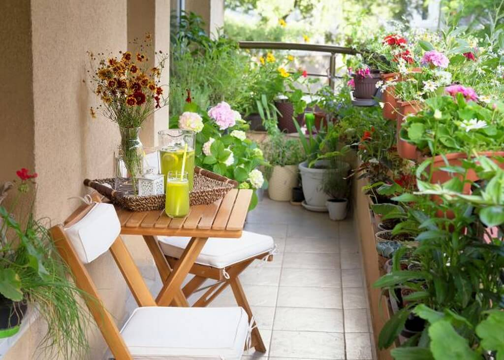 MY GARDEN STORY – BE THE CHANGE, JOIN THE GREEN REVOLUTION! my garden story - Balcony Garden - MY GARDEN STORY – BE THE CHANGE, JOIN THE GREEN REVOLUTION!