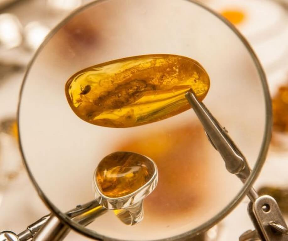 Amber jewellery – From royalty to healing powers  amber jewellery - Amber jewellery     From royalty to healing powers 3 - Amber jewellery – From royalty to healing powers