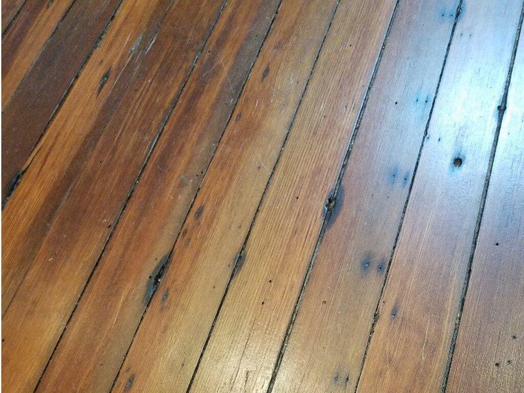 Flooring: softwood vs hardwood flooring - Flooring softwood vs hardwood 3 - Flooring: softwood vs hardwood