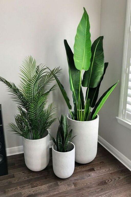Indoor plants: Simple design hacks to decorate indoors indoor plants - Indoor plants Simple design hacks to decorate indoors 4 512x768 - Indoor plants: Simple design hacks to decorate indoors