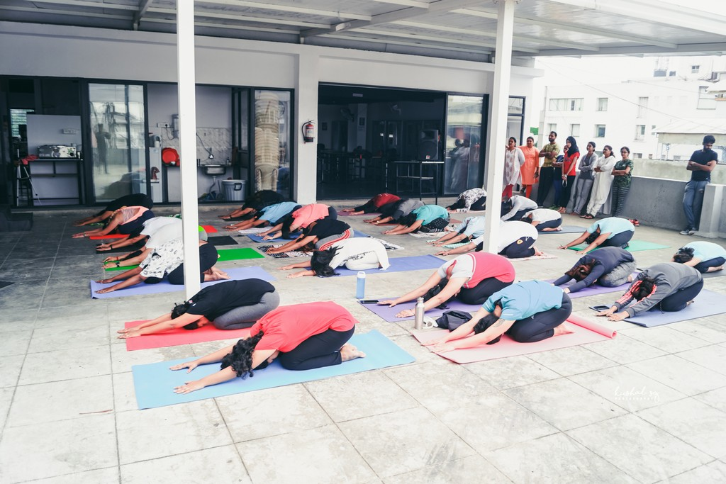 International Yoga Day observed at JD Institute international yoga day observed at jd institute - International Yoga Day3 - International Yoga Day observed at JD Institute