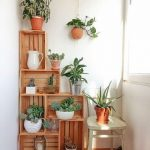 treehouse - INDOOR PLANTS and HOUSE PLANTS 150x150 - You've Never Seen a Treehouse like This Before treehouse - INDOOR PLANTS and HOUSE PLANTS 150x150 - You've Never Seen a Treehouse like This Before
