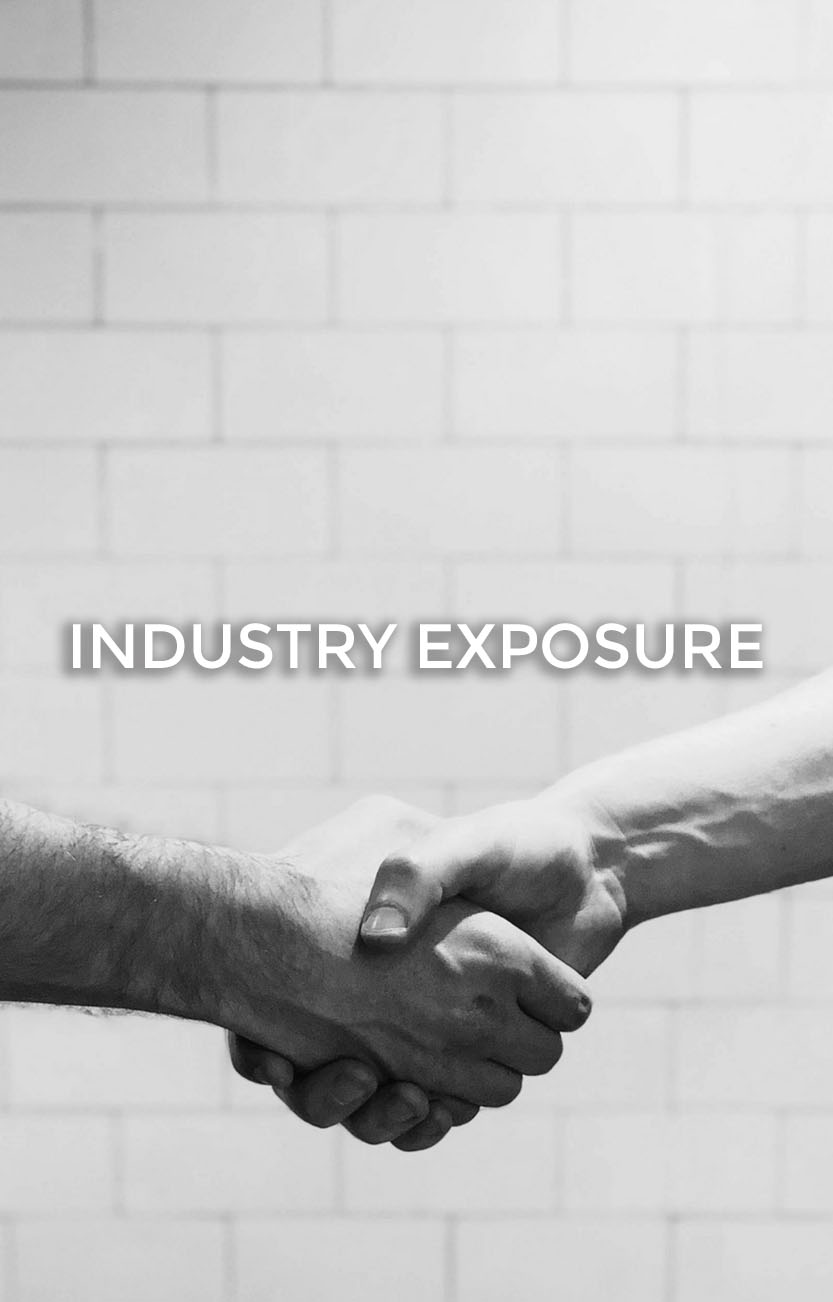 Home Page Industry Exposure BG