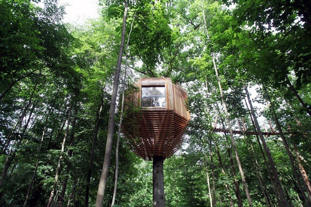 Treehouse treehouse You've Never Seen a Treehouse like This Before Treehouse 1 1024x682