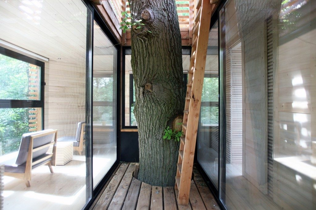 You've Never Seen a Treehouse like This Before Treehouse 3 1024x683