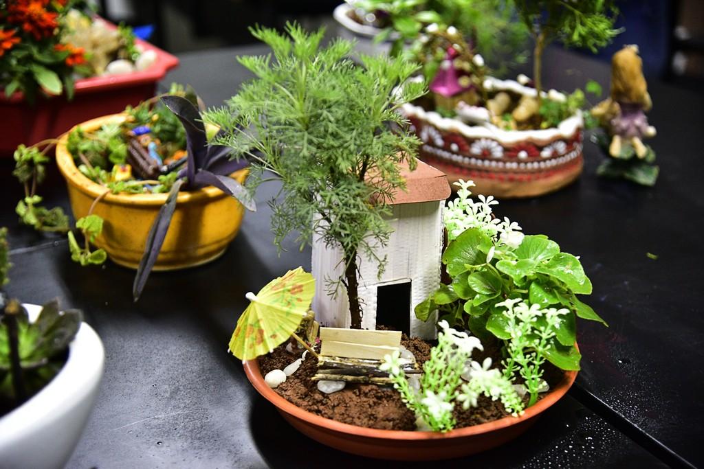 interior design – fairy garden – diploma f Interior Design – Fairy Garden – Diploma F Interior Design E28093 Fairy Garden E28093 Diploma F 5