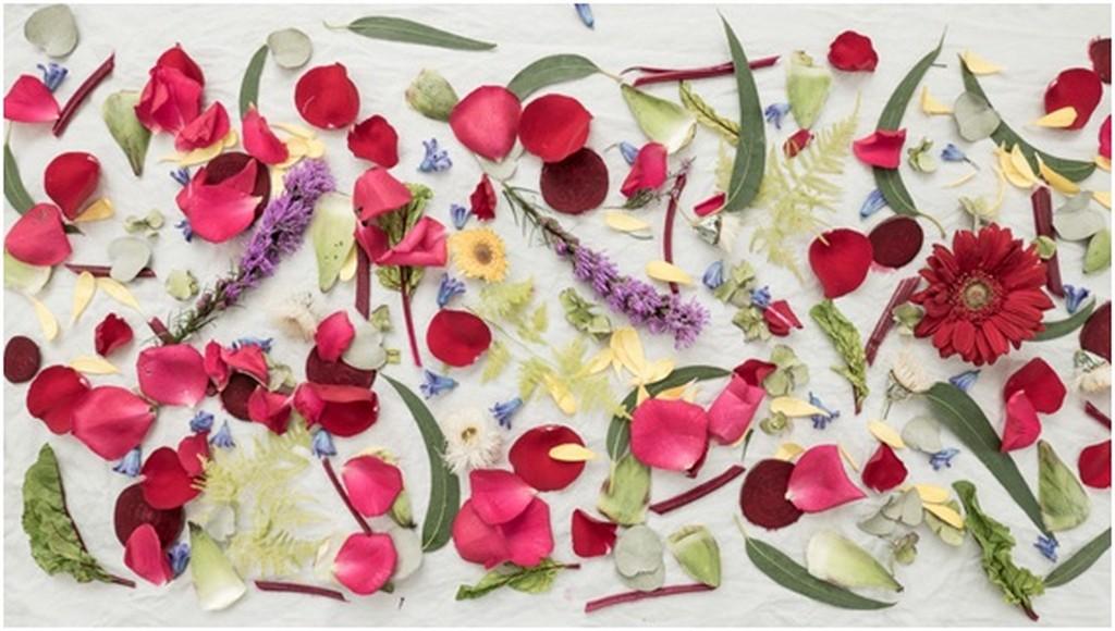 THE ART OF (FLORAL) DYEING the art of (floral) dyeing THE ART OF (FLORAL) DYEING THE ART OF FLORAL DYEING 1