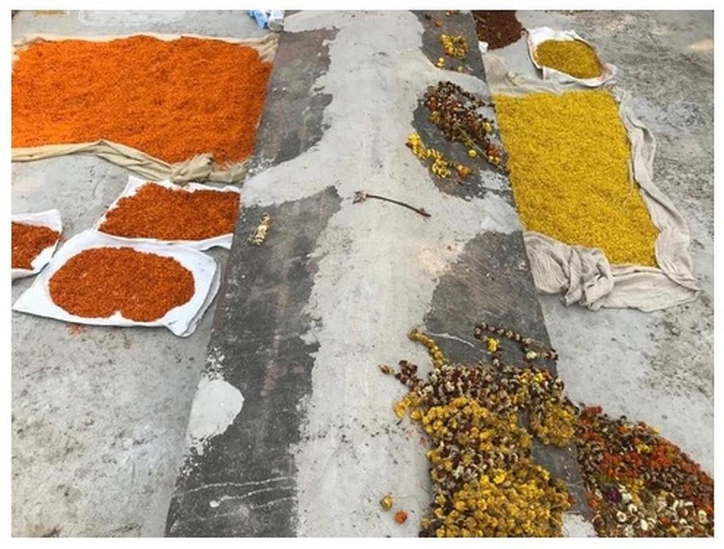 the art of (floral) dyeing THE ART OF (FLORAL) DYEING THE ART OF FLORAL DYEING 7