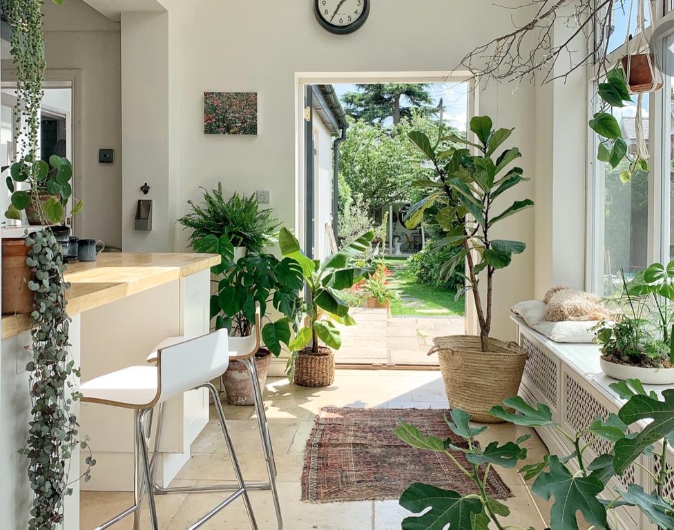 Natural element in Interior Design- Bipophilic Designs biophilic design - Natural element in Interior Design Bipophilic Designs - Biophilic Design – A Nature Oriented Interior Design